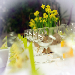 3-Hochzeitsfest-an-der-Spree