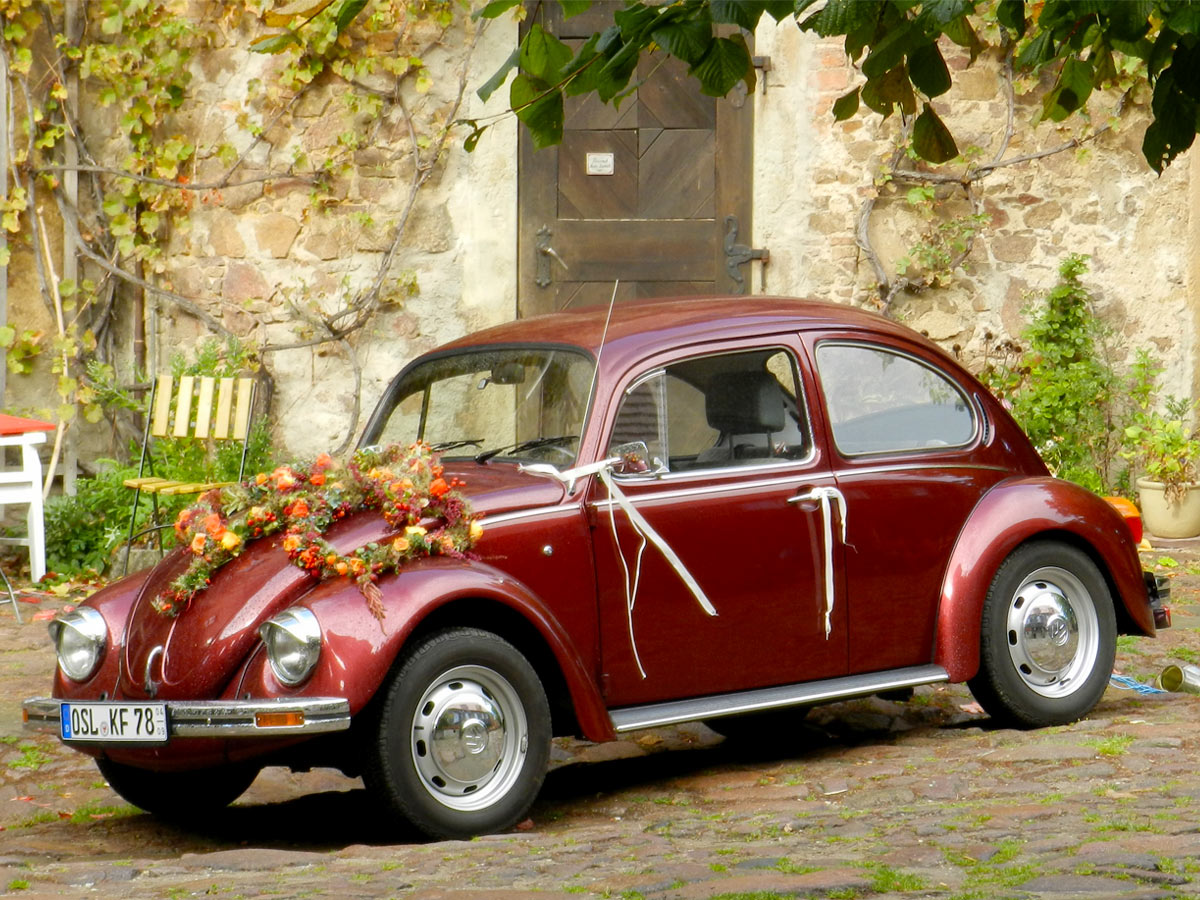 Hochzeits-Käfer mieten