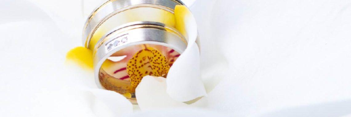 Juwelier Voigt - Meistergoldschmiede seit 1927