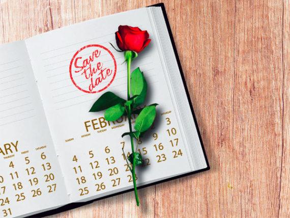 Hochzeits-Checkliste-Desden